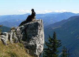 Closer to God - view of High Tatras from Poludnica, Low Tatras